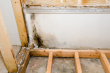 stock-photo-9454196-mold-growing-in-basement-bathroom